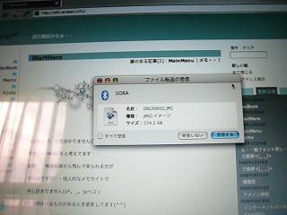img5_P1000309-1.jpg